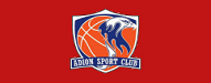 adion basketball